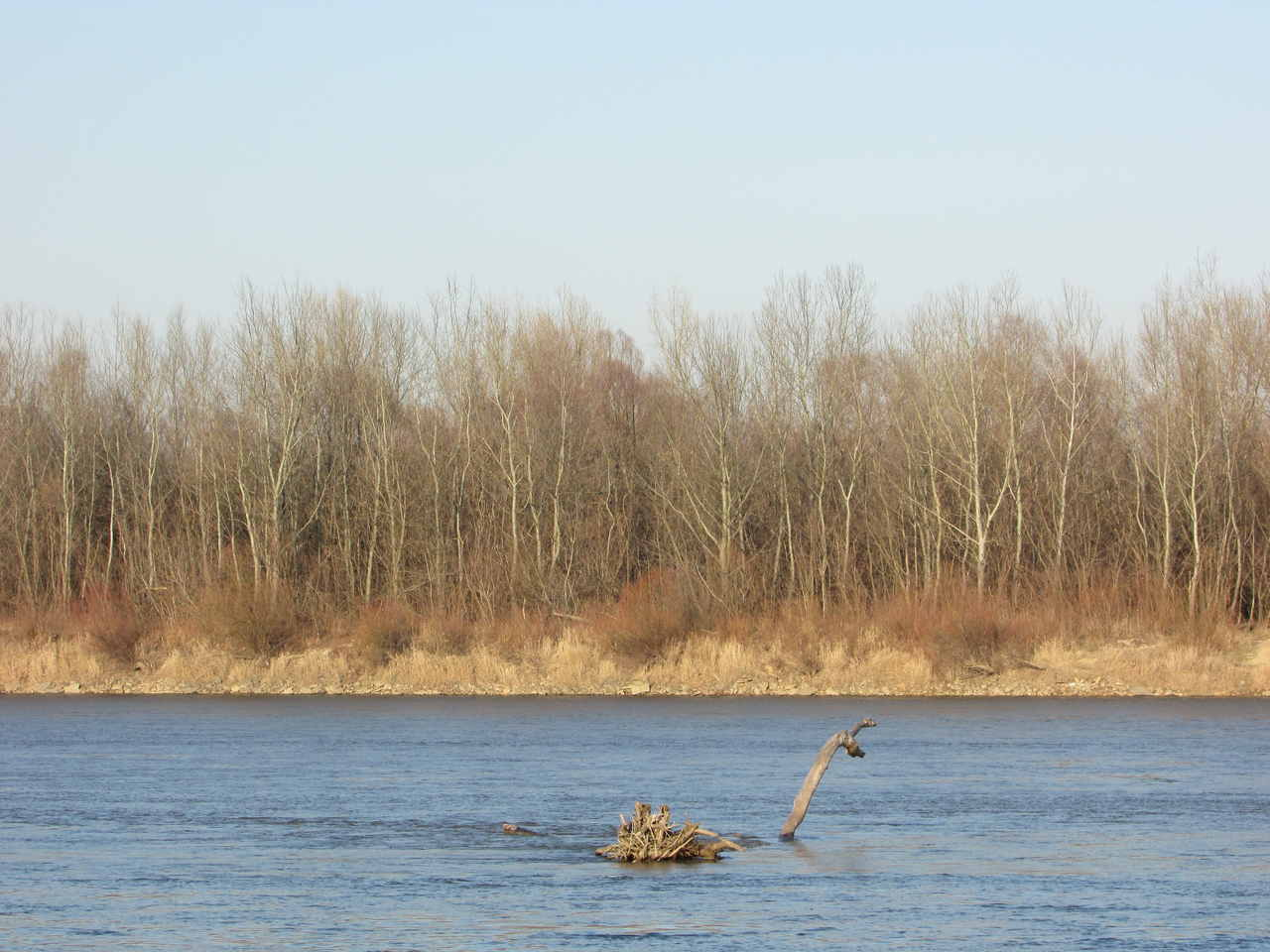 Joanna-Adamek- Wisła i Potwór z Loch Ness - Fotografia